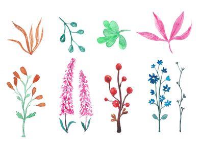 Random watercolor plants a