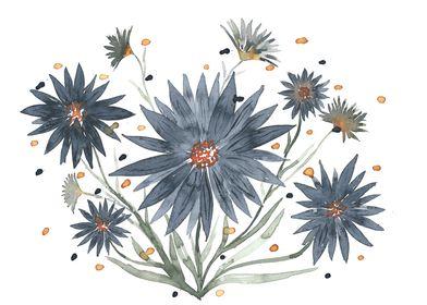 Dark daisies