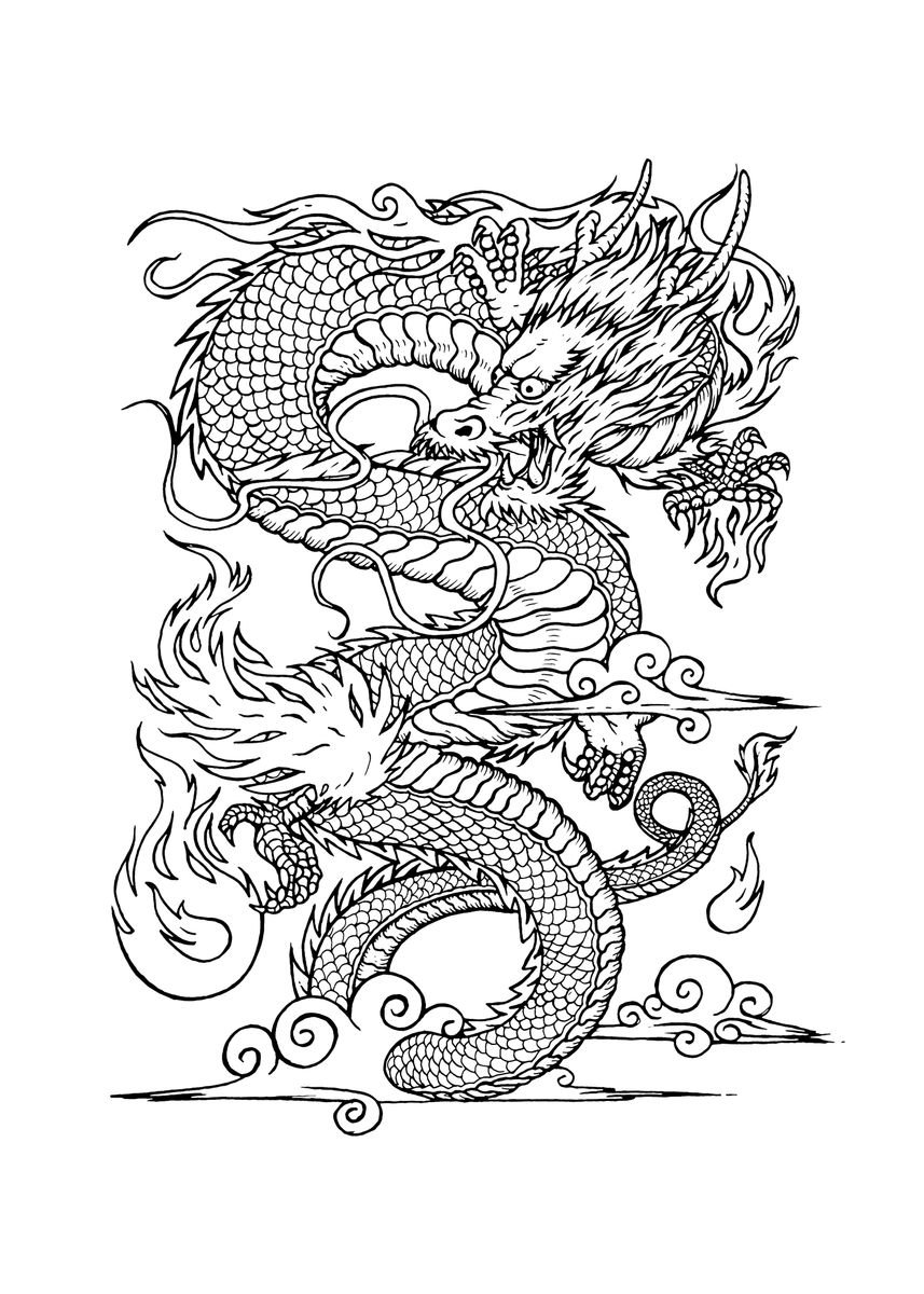 Vintage Chinese Dragon Drawing Poster Print By Bacht Displate